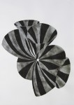 C.Hoffmann, S-W 6.2010. 84 x 60 cm Tusche, Blattaluminiium auf Papier