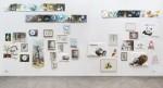 Jagdgründe-Ausstellung Conny Theis, November 2012, Galerie Hengevoss-Dürkopp
