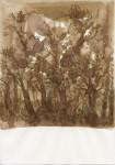 Kyung-hwa Choi-ahoi, Herbst, 21 x 30 cm, Tinte auf Papier, 2014