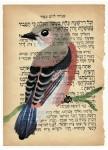 Julien Roux, Bird serie - Sans titre 8, 2014, water colour on Hebrew prayer book, 10 x 8 cm