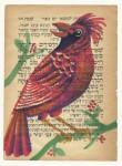 Julien Roux, Bird serie - Red groas beak, 2014, water colour on Hebrew prayer book, 10 x 8 cm
