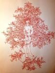 Bea Emsbach, Schamanin, 2003-2008, Werkreihe Fremde Frauen Kolbenfüller, Tinte auf Papier, 42 x 30 cm, gerahmt (hell)