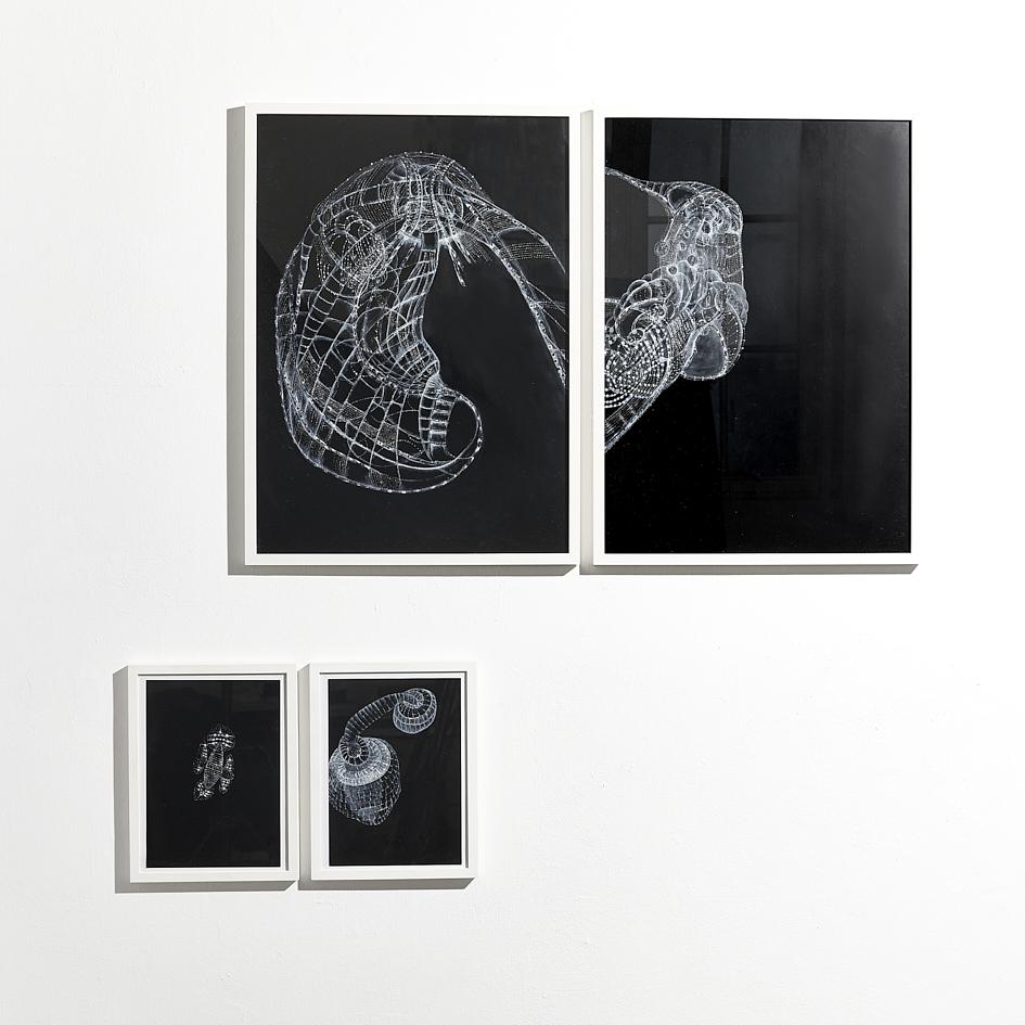 Ausstellungsansicht_Manfred Eichhorn_ oben je 1.500€ unten je 750€