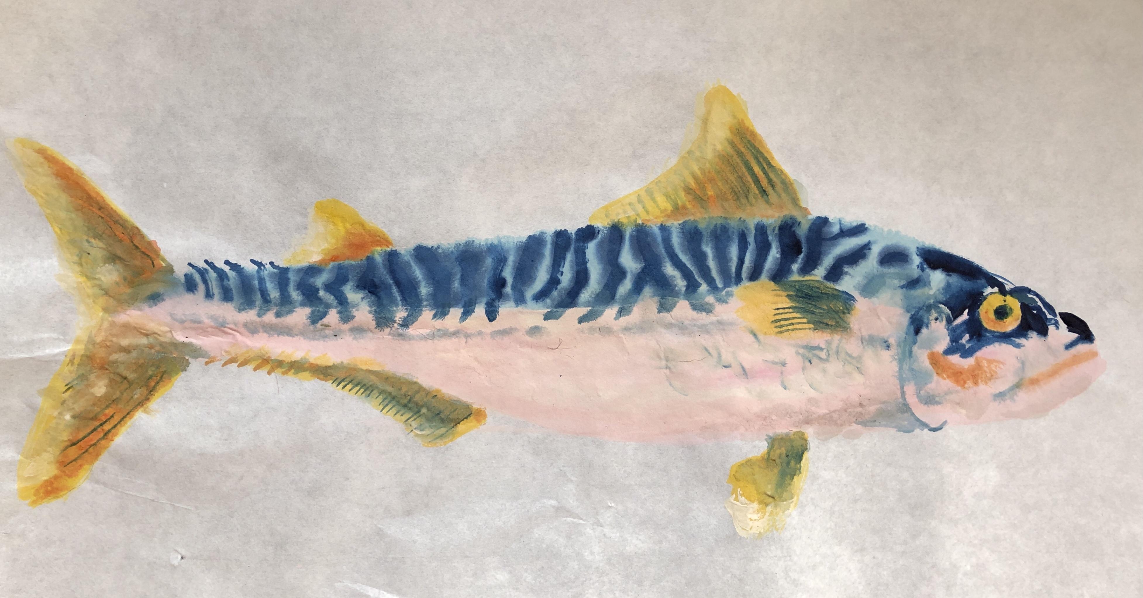 Mackerel, 2021, Tinte, Gouache, Acryl auf Japanpapier, 28 x 53 cm