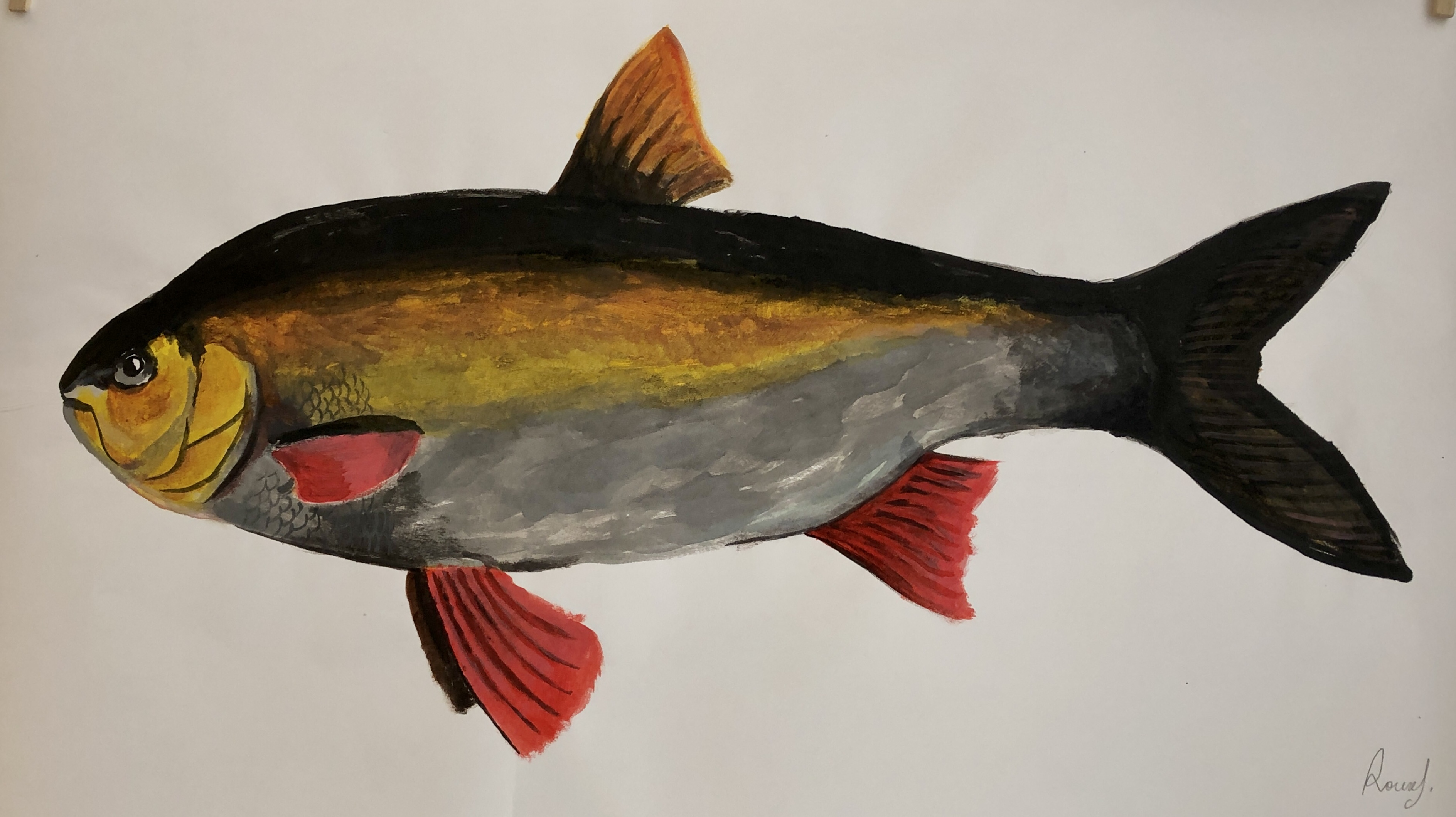 Fish 36, 2020, Tinte, Gouache, Acryl auf Japanpapier, 45 x 85 cm