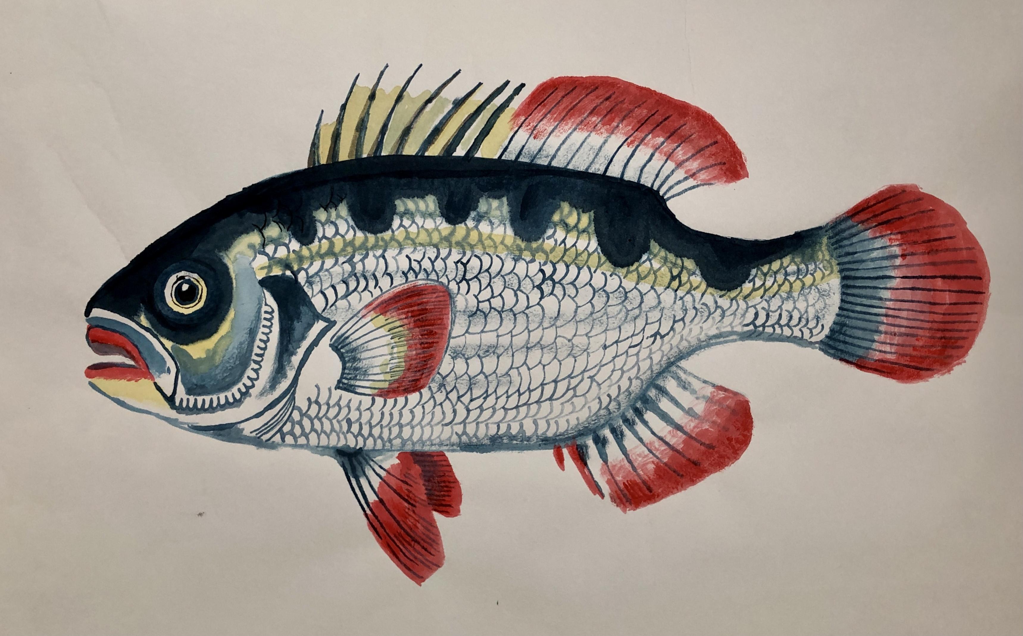 Fish 27, 2020, Tinte, Gouache, Acryl auf Japanpapier, 35 x 45 cm