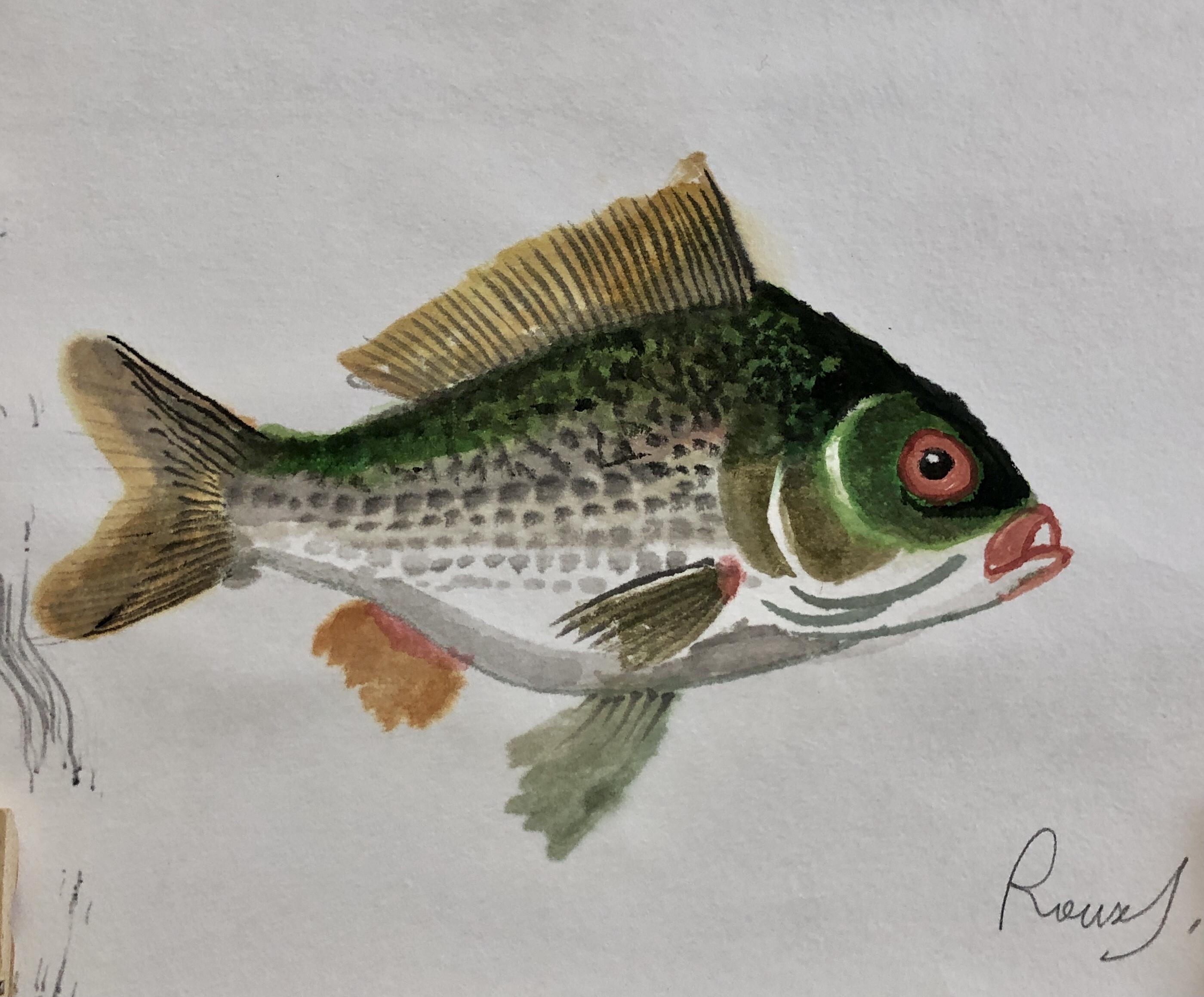 Fish 20, 2020, Tinte, Gouache, Acryl auf Japanpapier, 20 x 20 cm